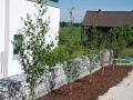 Beetbepflanzung Zufahrt, Gabionen
