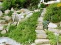 Hangbepflanzung, Stein im Garten, gewachsener Steingarten