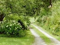 Wildromantische Zufahrt