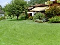 Gepflegte Rasen- und Beetflächen