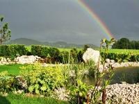 Wetter spüren und erleben im Garten