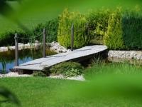 """Ein- und Ausblicke – angenehmes """"auf dem Holzweg sein"""