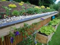 Dachbegrünung mit kombinierten Holz-Hochbeeten
