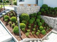 Spannende Buxpflanzung mit Steinkörben