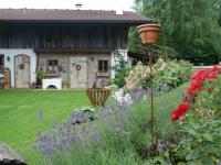 Rasen und Steingartenbeet als Böschungsbepflanzung nach einem Jahr Teil 4