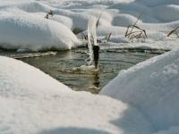 Wasserspiel trotzt Schnee