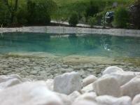 Klar wie ein Gebirgsfluss, Teich mit Weissenbachersteinen