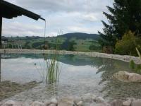 Teich mit Aussicht, Basis Weissenbachersteine