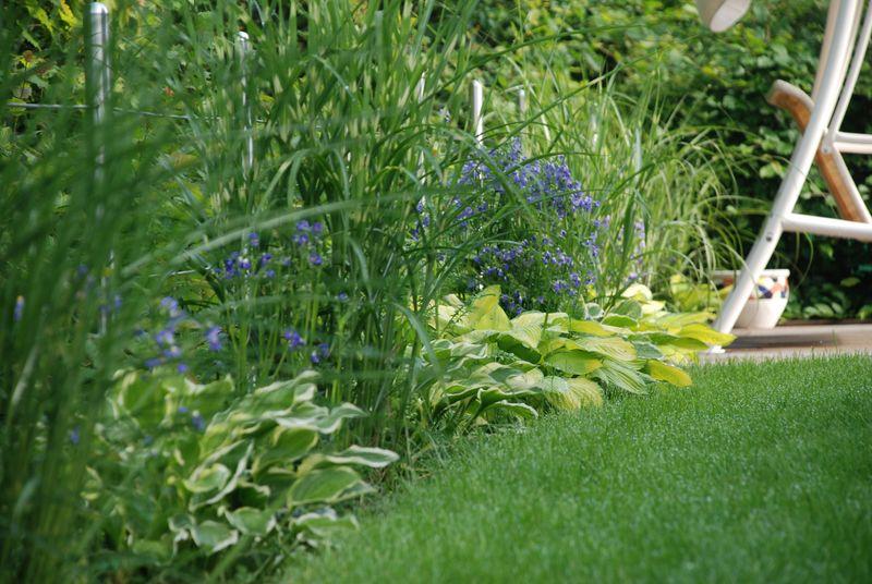 Dienstleistungen der service g rtner gartengestaltung for Gartengestaltung nach farben