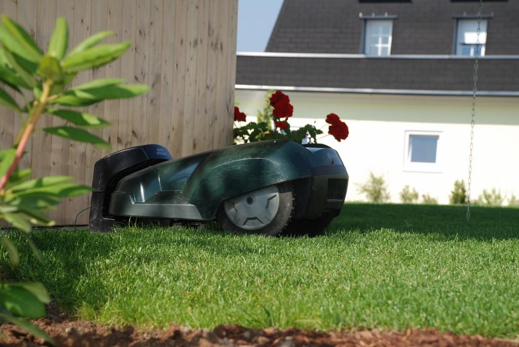Rasenroboter sorgen für einen gepflegten artenarmen Rasen