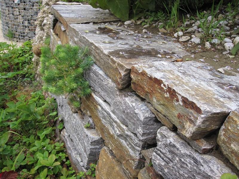 Bepflanzung einer Mauer aus Stainzer Gneis