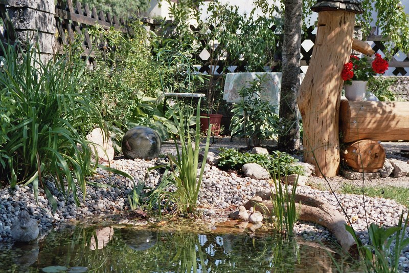 Biotopbau - Naturnaher Teich nach wenigen Jahren