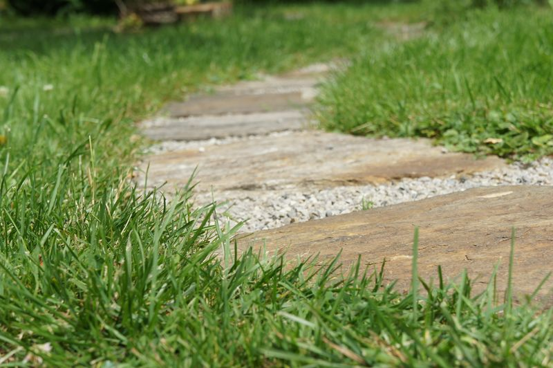 Trittplatten im Rasen
