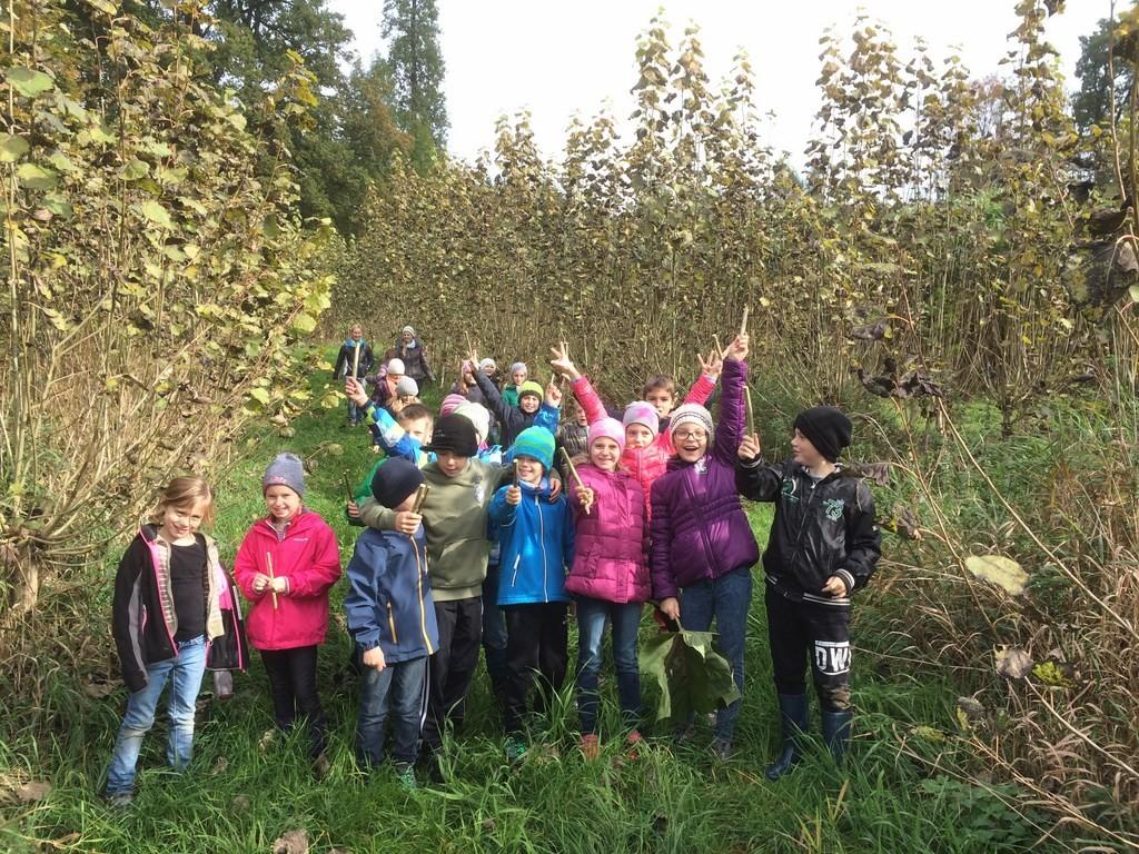 Kinder erleben den Energiewald hautnah