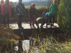 Kinder und Wasser - das heißt magische Anziehung