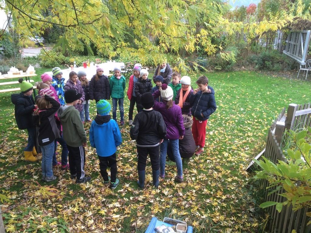 Besprechung über Bodenlebewesen auf einem Quadratmeter Boden