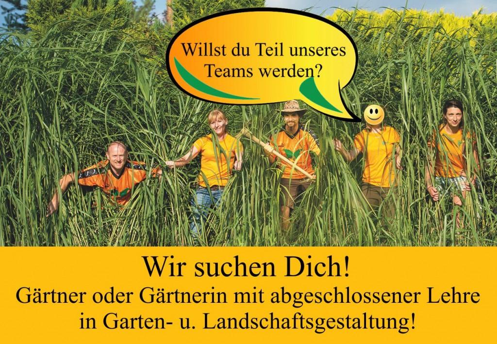 DSG Team Gärtnerinnensuche