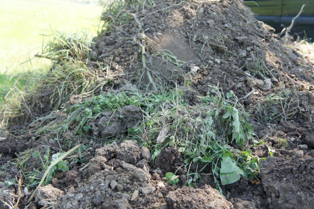 Hügelbeet - abgezogen Wiesensoden seitlich gelagert