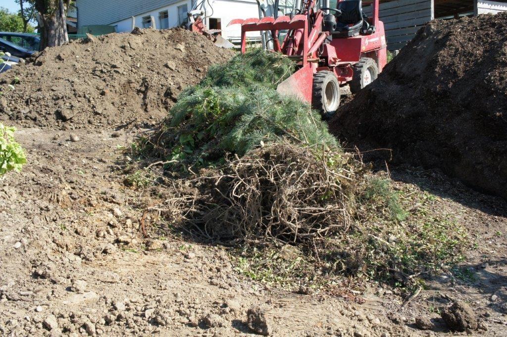 Hügelbeet - holziges Material wie Äste, Zweige und kleinere Baumstämme als unterste Schicht