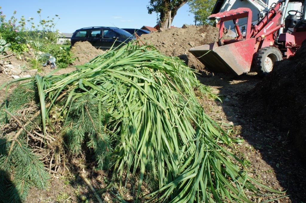 Hügelbeet - weichers Material wie Staudenschnitt, Laub oder anderer Grünschnitt wieder wallartig aufgeschüttet